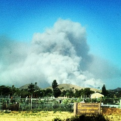 CA brush fire