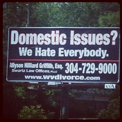 """""""Domestic Issues"""""""