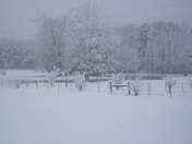 Snow Fall in Florence, MS