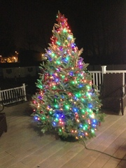 Christmas tree on the deck