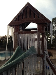 Icicles in NW Florida