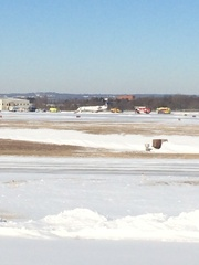 Plane runs off runway