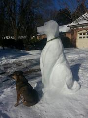 Bow-wow Ice Dog