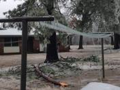 Ice storm damage in Graham, NC
