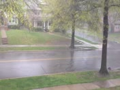 Moderate Rain in Brookside
