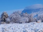 SNOW ON THE SANDIA'S