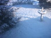 Snow Marks