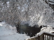 front door view Feb 6