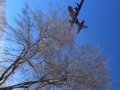 C-130 Flyover Panthers Super Bowl