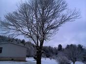 Snow in the Meadows of Dan/Laurel Fork, VA area