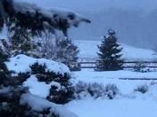 Still snowing in Silver Run, Md