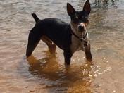 Titus at the lake