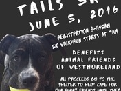Trails for tails 5k