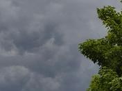Flat Rock's Darkening Sky's