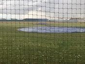 Hail in Piedmont