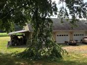 Wind damage from last night