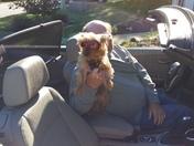 My dog Lucy