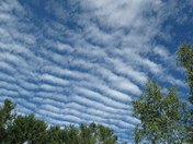 Ripple Clouds in Jericho