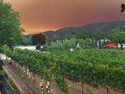 Soberanes Fire. Sunday at noon
