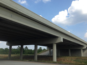 Mud Swallow Nests on HWY 49