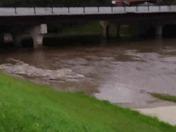 papio creek
