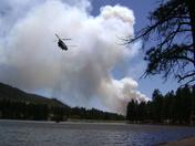Fenton Lake State Park - 2010 Fire