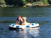 Maggie the Golden Retriever Tubing at Wheelwright Pond