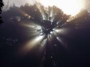 Beautiful sunrise/