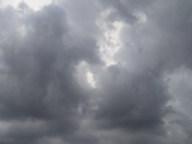 Palm City Storm