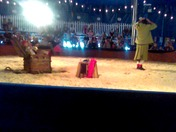 a show at the state fair