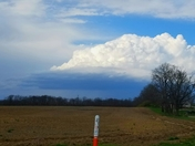 Shelf cloud forming?