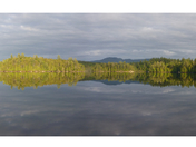 Weller Pond, Saranac Lake