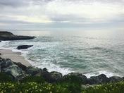 Bluff Views