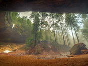 Fog at Ash Cave
