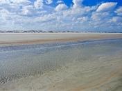 Little Talbot Island Beach beauty
