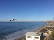 Crystal Cove Fly-By