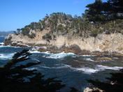 View at Point Lobos