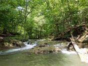 Cove stream