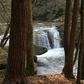 Potters Falls