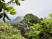 Rock Face at Grandfather Mountain