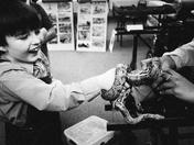 Pedagogy of The Snake
