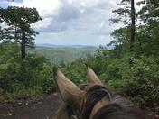From Horseback