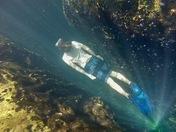 Free Diving Fun