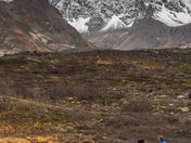 Trail Running In Alaska