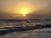Sunrise at Sebastian Inlet State Park