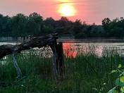 Tobico Sunset