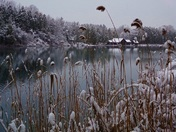 Frosty Green Lakes
