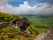 Colors of Grandfather Mountain