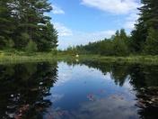 Kayaking on Kingston Lake