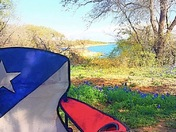Lake Whitney Bluebonnets